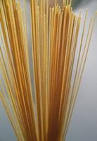 Whole Wheat Pasta Health Benefits
